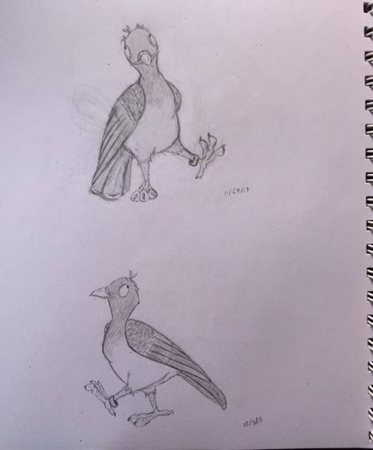 racingpigeon